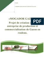 Mogador Gazon Business Plan