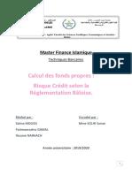 Calcul des fonds propres risque credit (Enregistré automatiquement) (3)