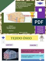Seminario Tejido Oseo Sección 10