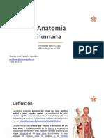 AnatomnnanSGnSST___20602bc22e64f85___