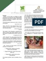 Informativo Raposos Sustentável - Ano 3 - nº 29