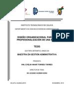 Diseño Organizacional Ejemplo
