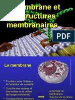 Bio- La membrane plamique