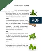 Plantas Medicinales y su Utilidad