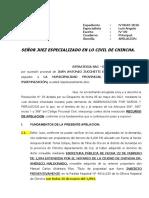 APELACION DE SENTENCIA CHINCHA