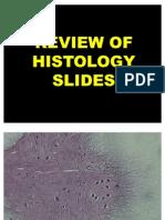 Histo Slides Volume III