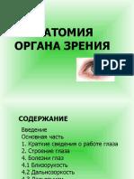 eye-anathomy