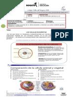 Ciencias_502_JM_semana 3 y 4