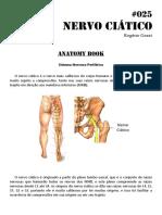 025 - Anatomy book - Nervo Ciático