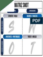 Infografico_SWOT