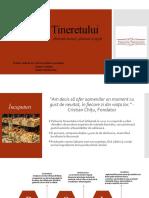 P&D; Patiseria Tineretului; Analiza PESTLE Și SWOT (1)