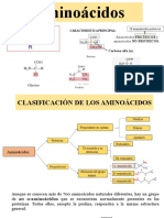 Aminoacidos y proteinas