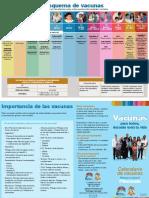 Esquema de Vacunas IGSS
