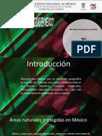 areas protegidas de mexico1.2