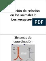 10-1c2ba-bach-la-relaciocc81n-en-los-animales-i-2013