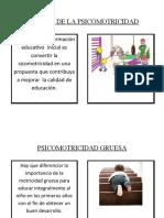 DIVISIÓN DE LA PSICOMOTRICIDAD