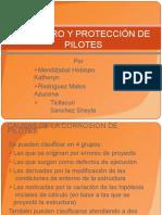 deterioro-y-proteccion-de-pilotes (1)