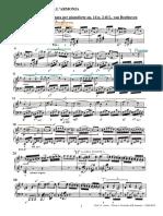 Analisi Beethoven Sonata op 14 n 2 I tempo