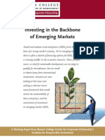 Investing-in-the-Backbone-of-Emerging-Markets