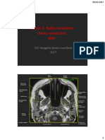 Atelier Radio Anatomie IRM