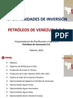 Oport-Neg-PDVSA-2021