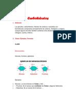 Actividad de investigación sobre carbohidratos