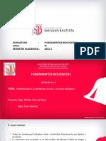 SEMANA 6 - 7 PRACTICA fundamentos biologicos I -