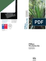 Pilhua Wechekeche Fundacion Denosotros 1 1