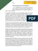 Psicoanalitica y psicodinamica.
