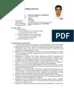 Curriculum vitae Luis Ernesto Pollack Chinchay