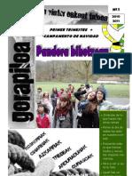 gorapilo 1er trimestre 2010 - 2011