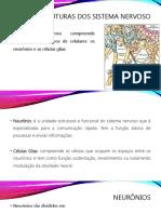 sistema nervoso-páginas-1-34