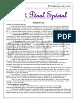 Pénal Spécial