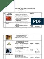 2_planificare_activitati_extracurriculare