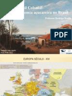 05 - Brasil Colonial - Economia Açucareira [Comentada]