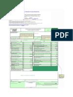 Plantilla-basica-formulario-210-para-DR-con-anexos