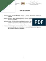 Liste des annexes fixant les modèles des rapports géologiques et miniers (1)
