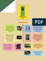 MICROBIOLOGIA VACUNA
