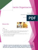 ....PPTCapacitación_Organizacional