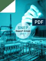 Rapport Annuel SNEP 2017 Compressed Min