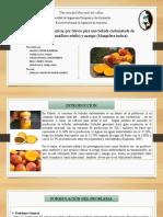 Sustitución Del Azúcar Por Stevia Para Una Bebida Carbonatada de Maracuyá (Passiflora Edulis) y Mango (Mangifera Indica).1 (1) (2)