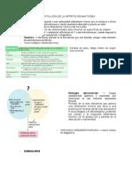 Fisiopatologia de La Artritis Reumatoidea