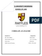 RAFFLES UNIVERSITY NEEMRANA cyber crime p17ru11018