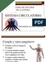 Aula 4 - Sistema circulatório