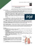 SEMIOLOGIA II 02 - Semiologia do Aparelho Pulmonar Aplicada