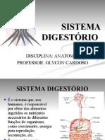 Aula 9 - Sistema digestório