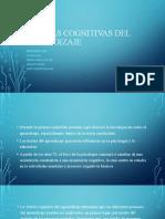 Teorías Cognitivas Del Aprendizaje (2)