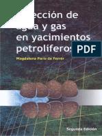 Libro Inyeccion de Agua y Gas