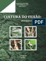 cultura-do-feijao