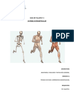 1.2.3 Taller n3 Sistema Osteoarticular